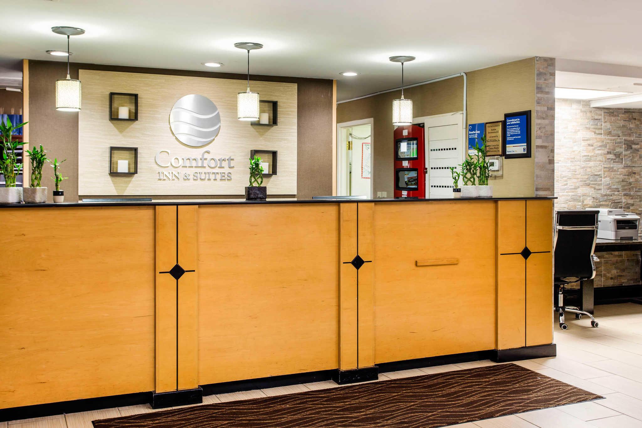 Comfort Inn & Suites Crabtree Valley image 3