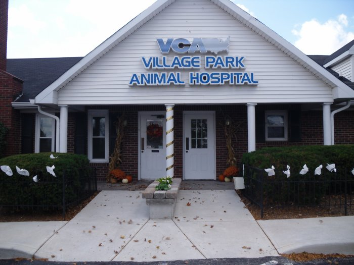 VCA Village Park Animal Hospital image 7