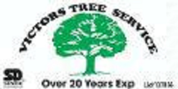 Victor Tree Service image 0