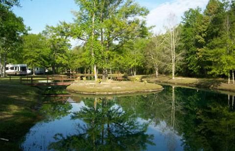 Starke / Gainesville N.E. KOA image 14