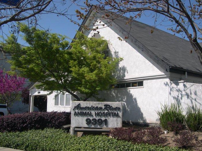 VCA American River Animal Hospital in Orangevale, CA, photo #9