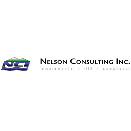Nelson Consulting Inc