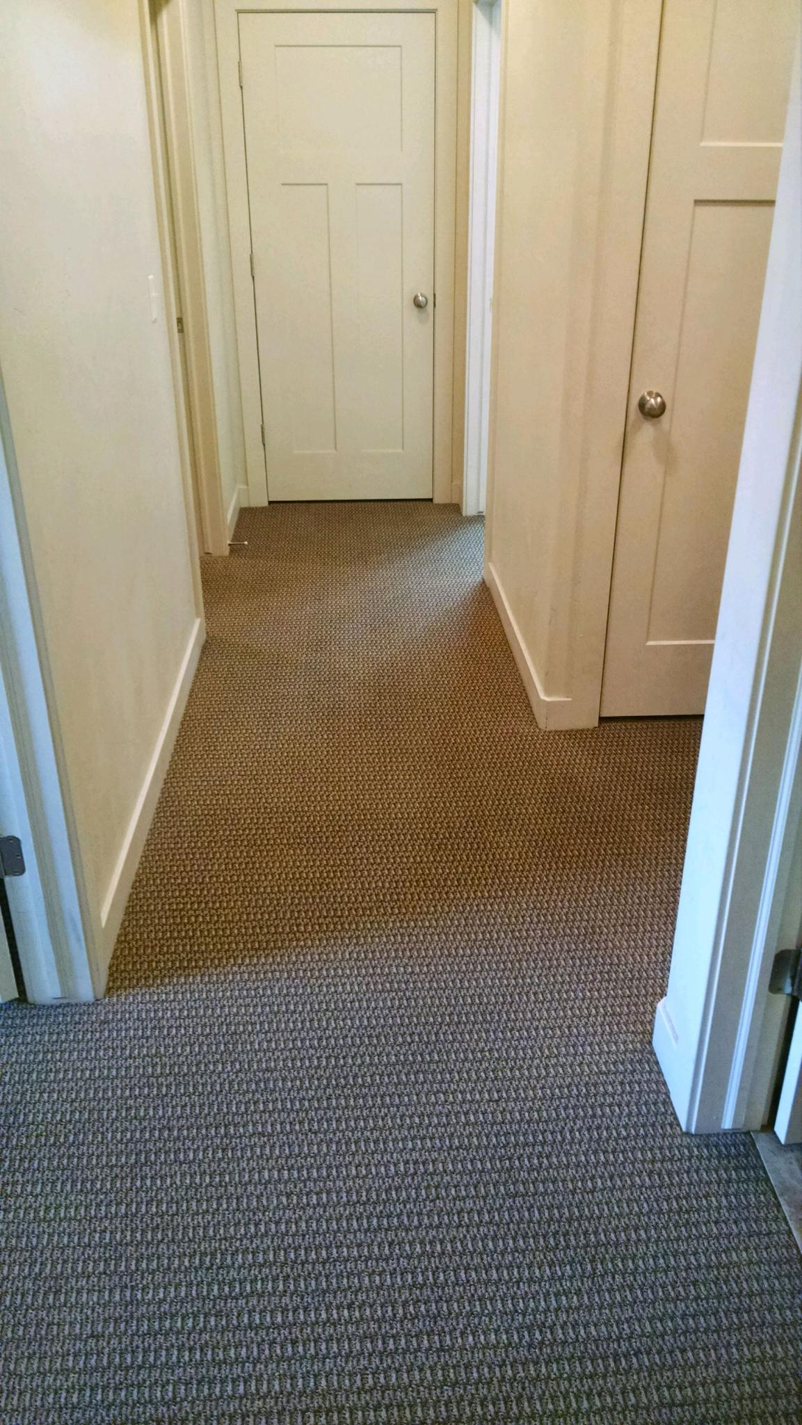 Kelly's Deep Clean Carpet & Upholstery Cleaning image 2