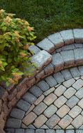 Snavely's Garden Corner image 4