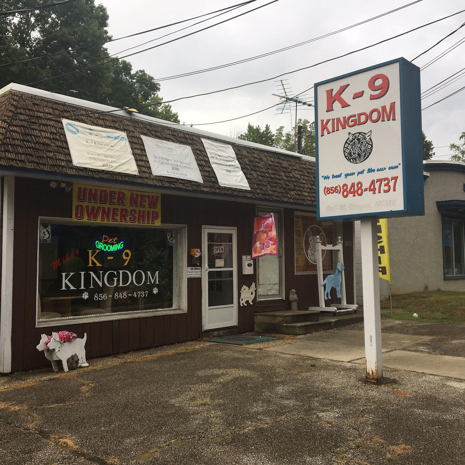 K-9 Kingdom image 3