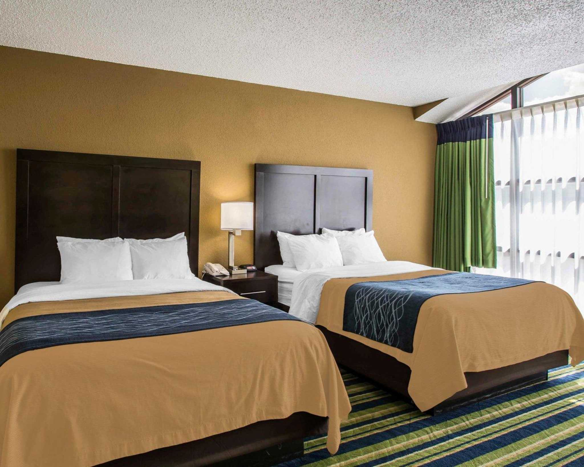 Comfort Inn & Suites Lantana - West Palm Beach South image 8