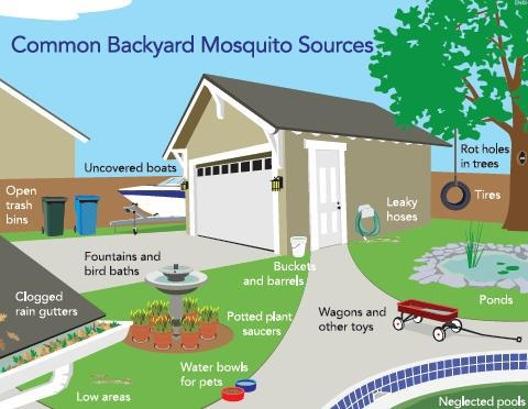 Mosquito Squad of Southwest & South Central Michigan image 3