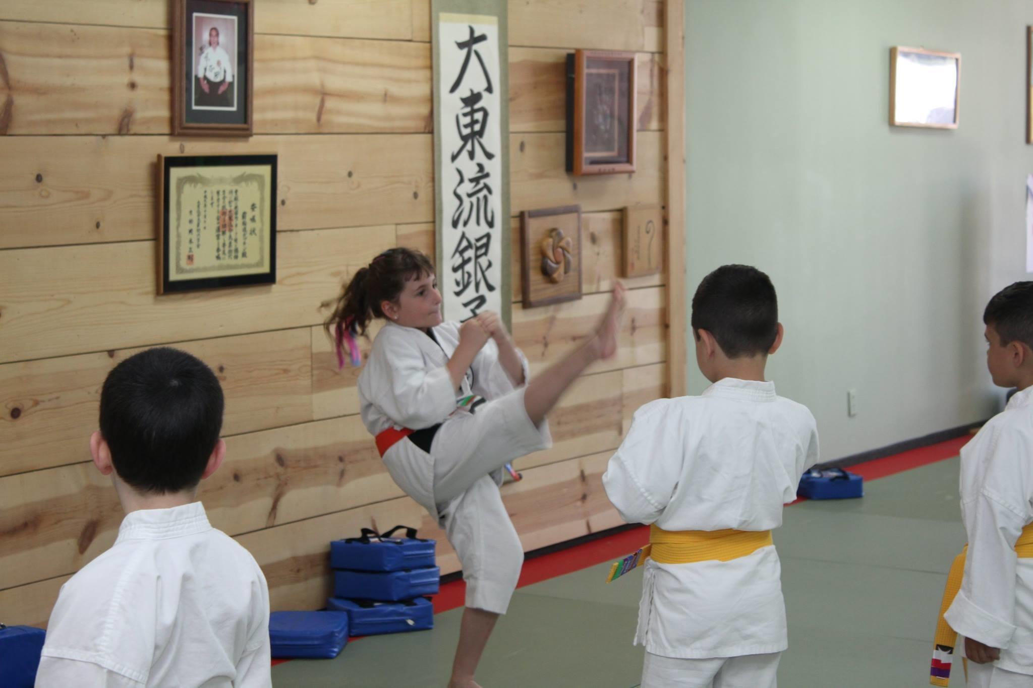 Popkin-Brogna Jujitsu Center image 11