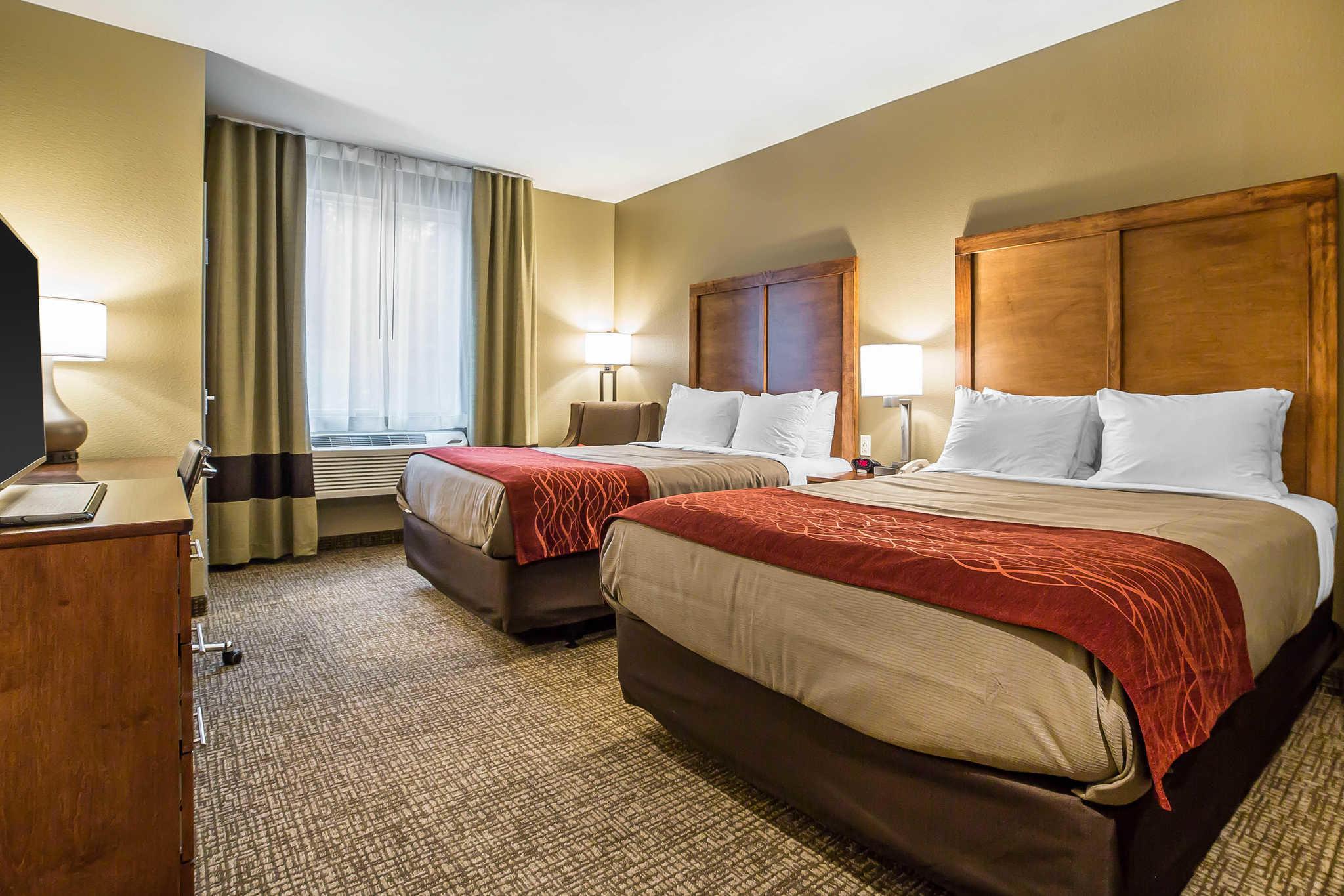Comfort Inn & Suites Near Mt. Rushmore image 11