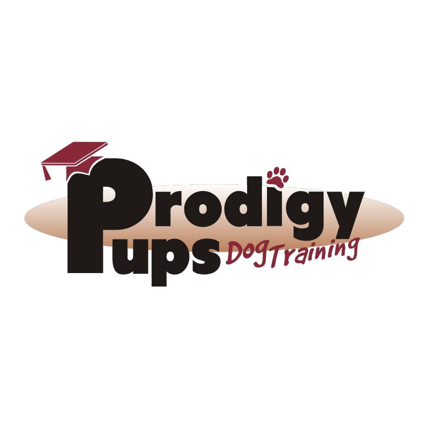 Prodigy Pups Dog Training LLC image 6