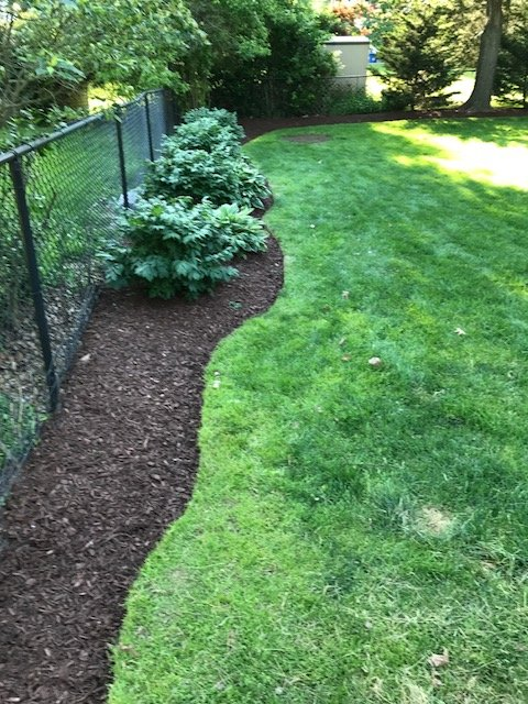 Rivera Brothers Landscaping image 8