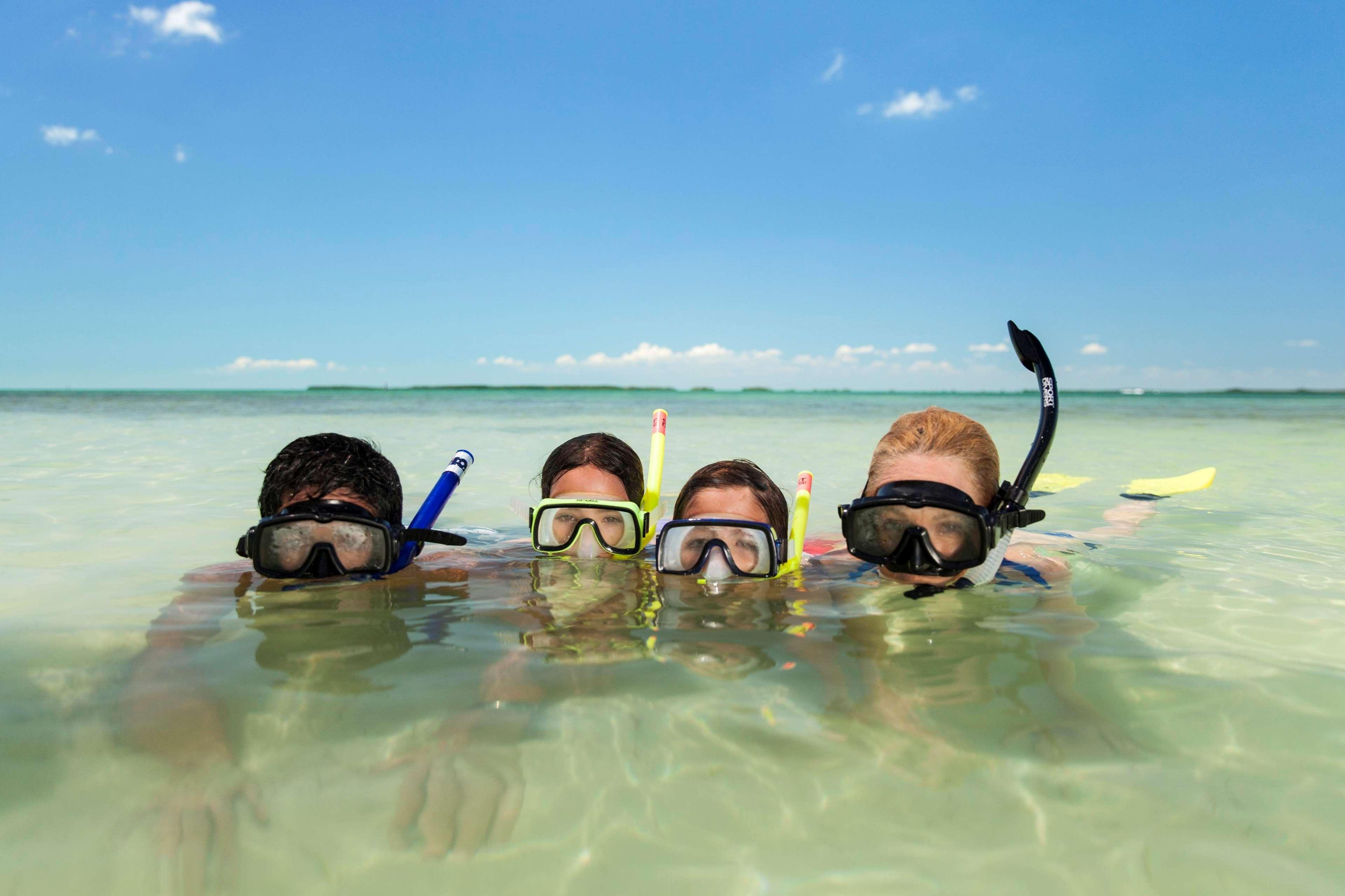 Hilton Key Largo Resort image 48