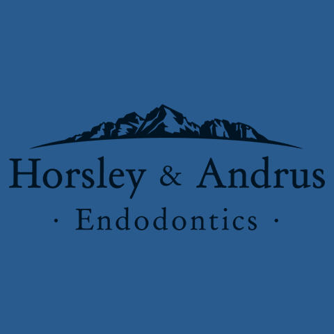 Horsley & Andrus Endodontics image 5