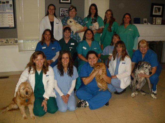 VCA Village Park Animal Hospital image 1