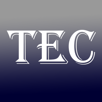 Texas Electric Company
