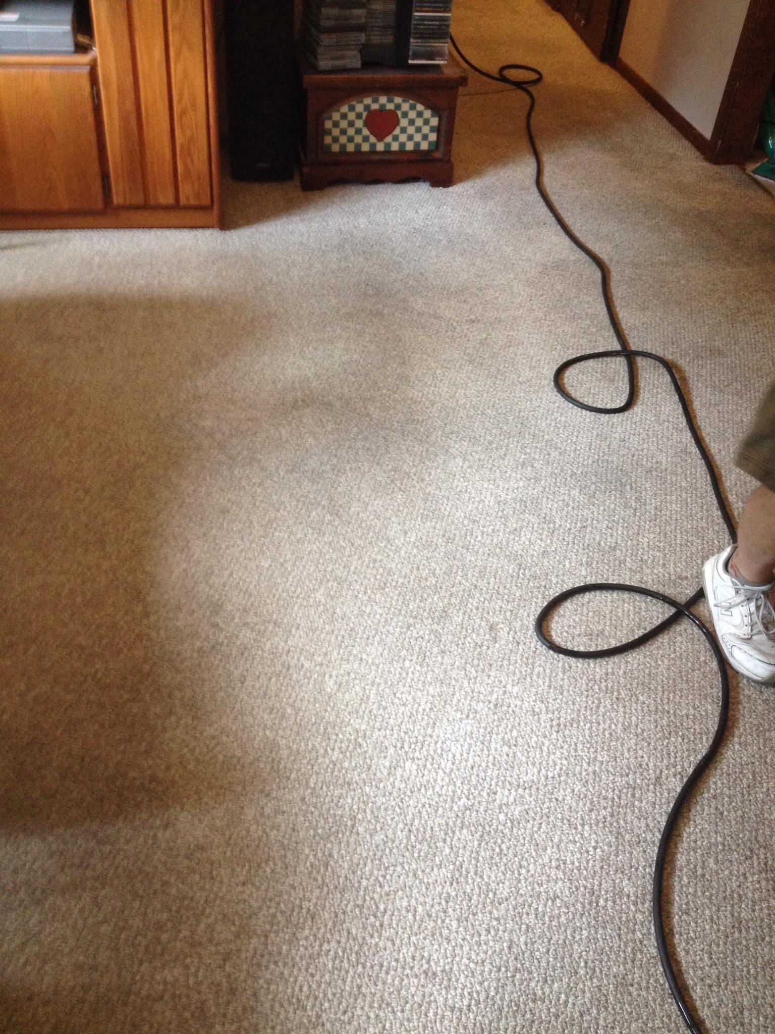 D&D Carpet Cleaning image 7