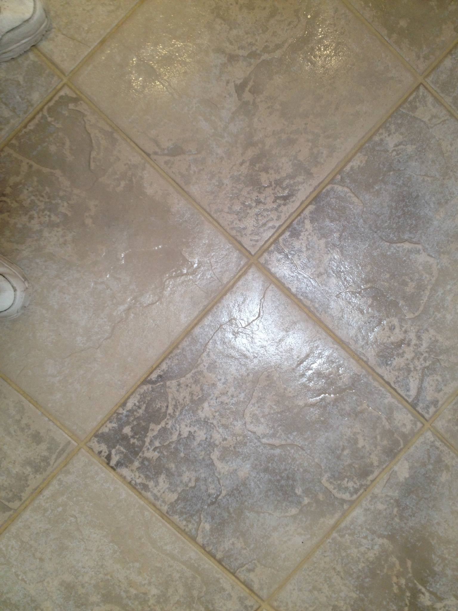 GCS Carpet Tile & Grout Cleaning image 4