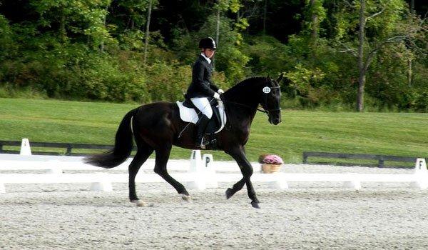 Whisper Wind Equestrian Center Inc image 2