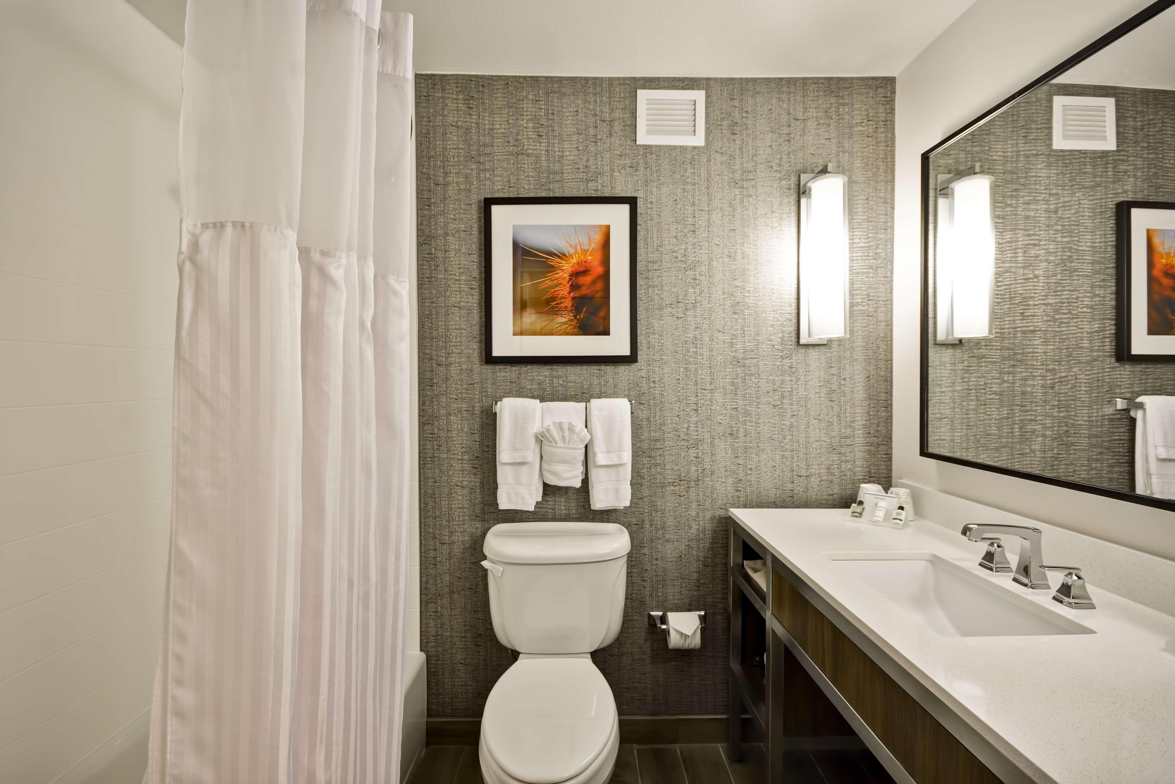 Hilton Garden Inn Austin/Round Rock image 18
