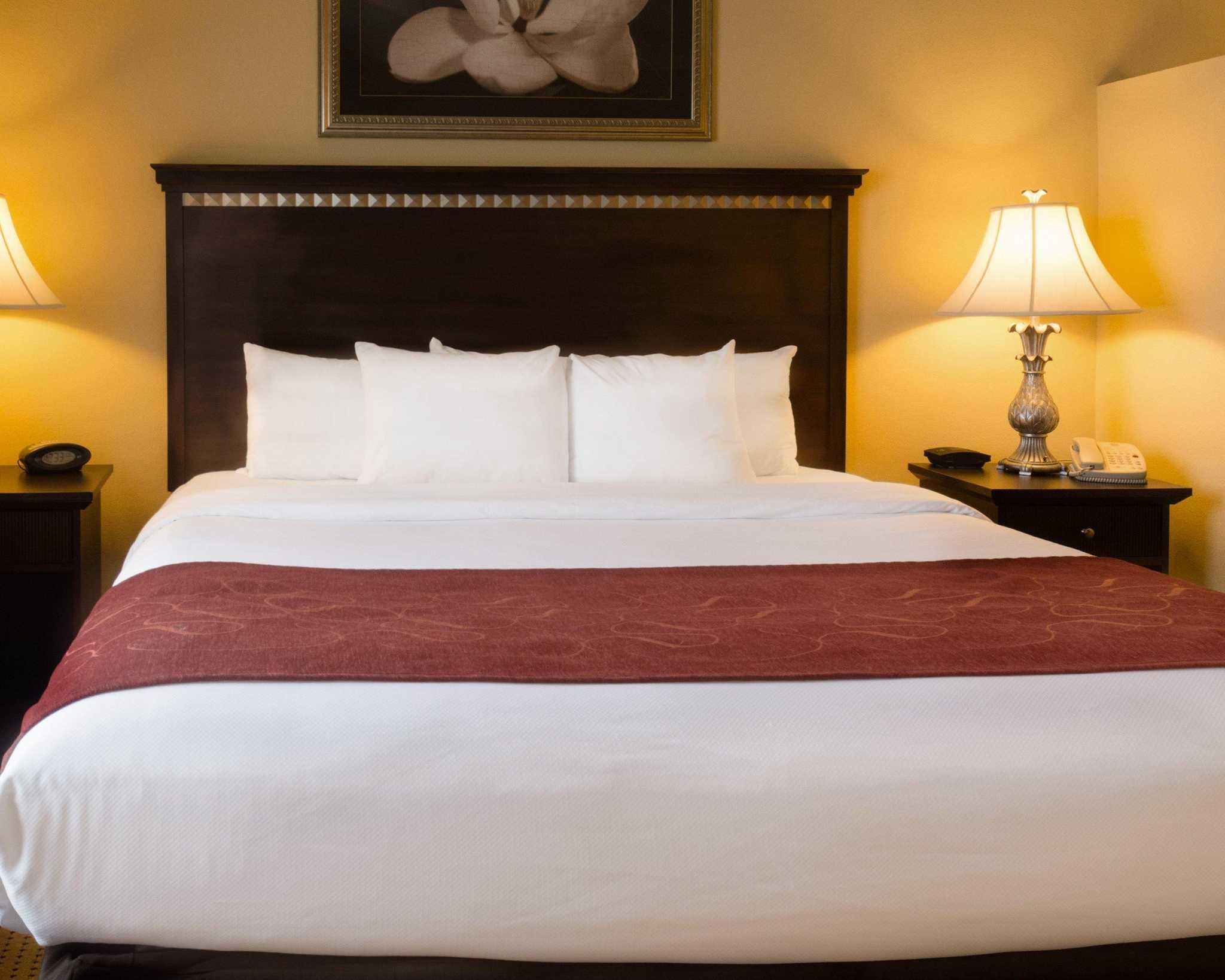 Comfort Suites Fredericksburg North image 23