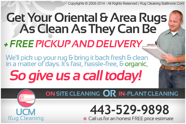 Image Result For Rug Cleaning Boston