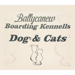 Ballycanew Boarding kennels