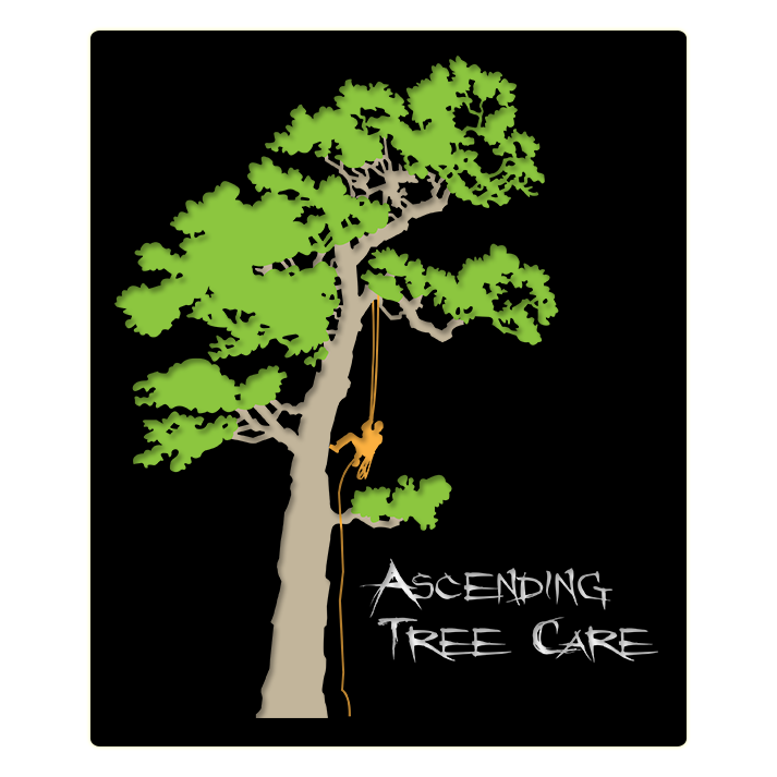 Ascending Tree Care LLC