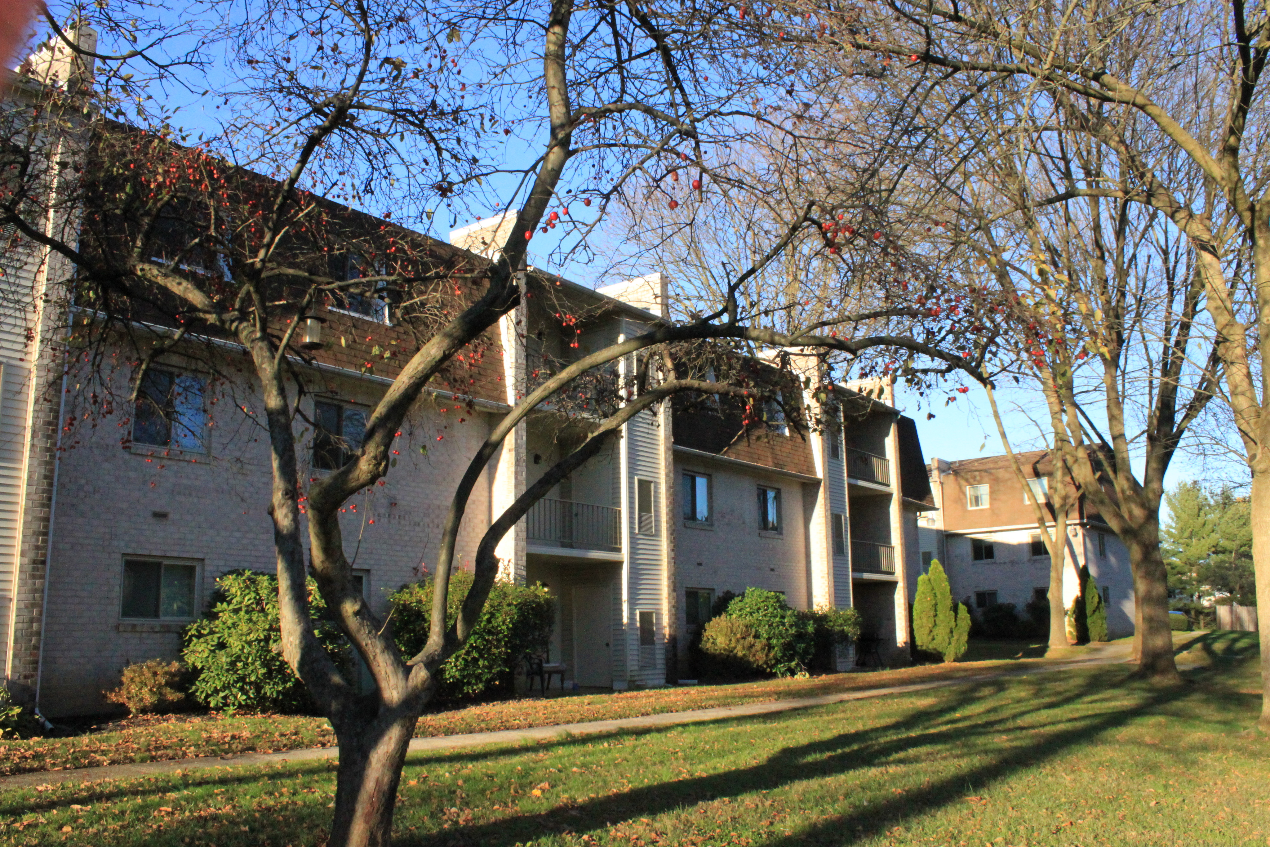 Caln East Apartments image 5