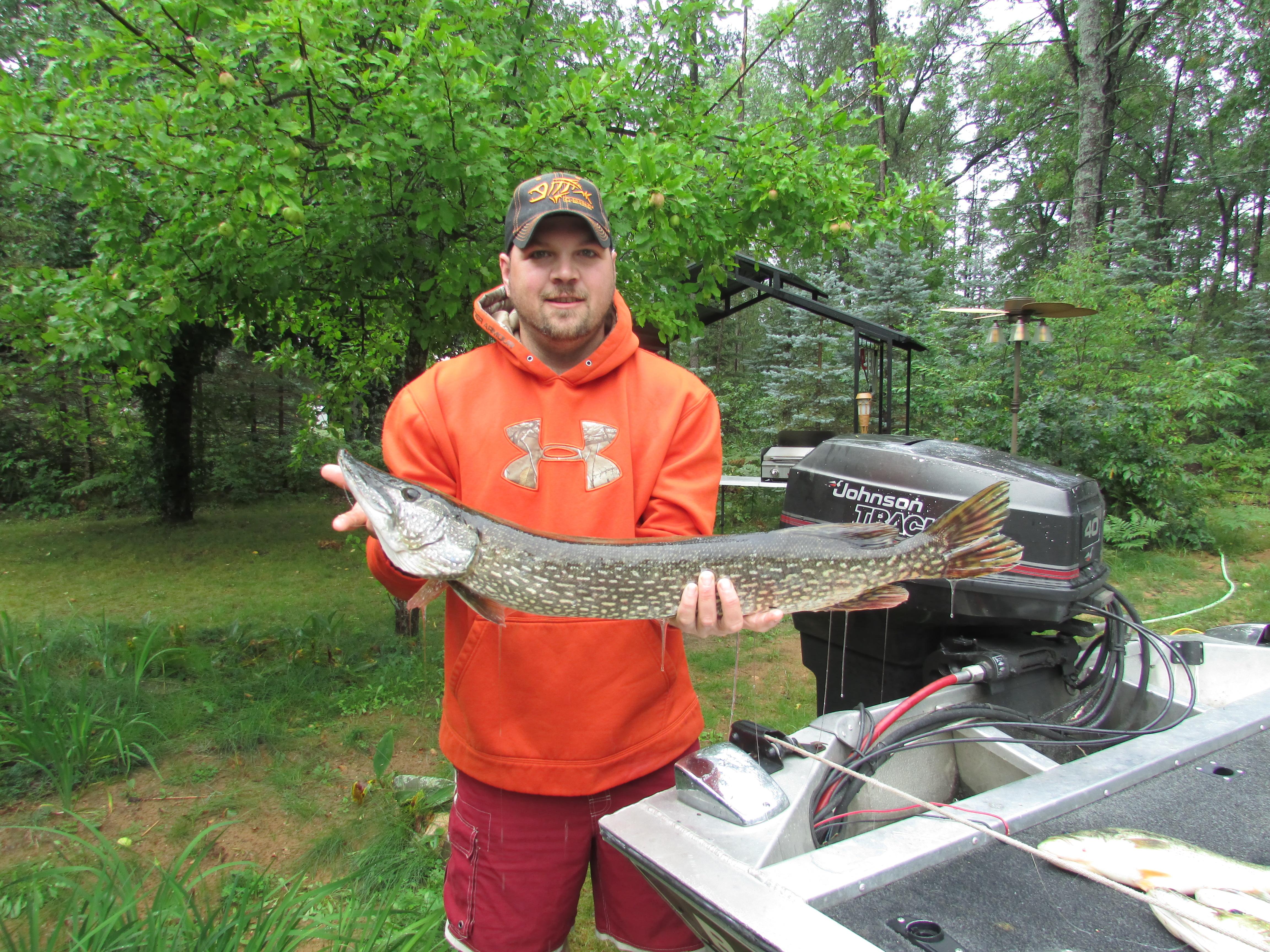 Best Bear Lodge & Campground Baldwin/Irons Area image 15