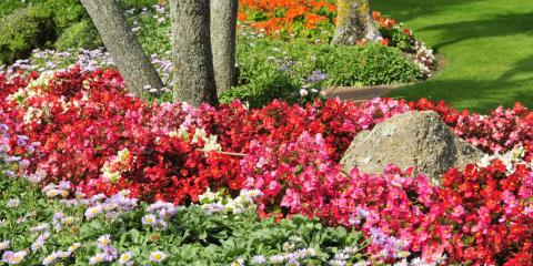 Down to Earth Landscaping & Snow Removal
