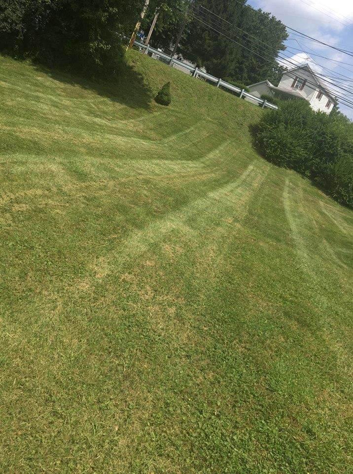 ZZ Lawn Care & Landscaping image 2
