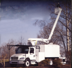 Able Tree Services image 1