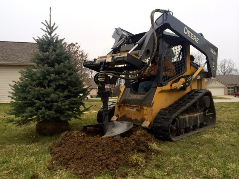 Several Colorado Blue Spruce trees were installed in fall 2014 for the Villages of Cobblestone homeowner association.