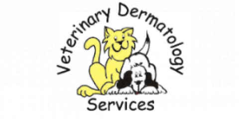 Veterinary Dermatology Services image 4