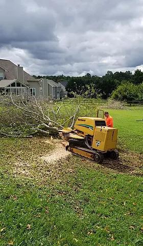 Southern Stump Grinding LLC image 0