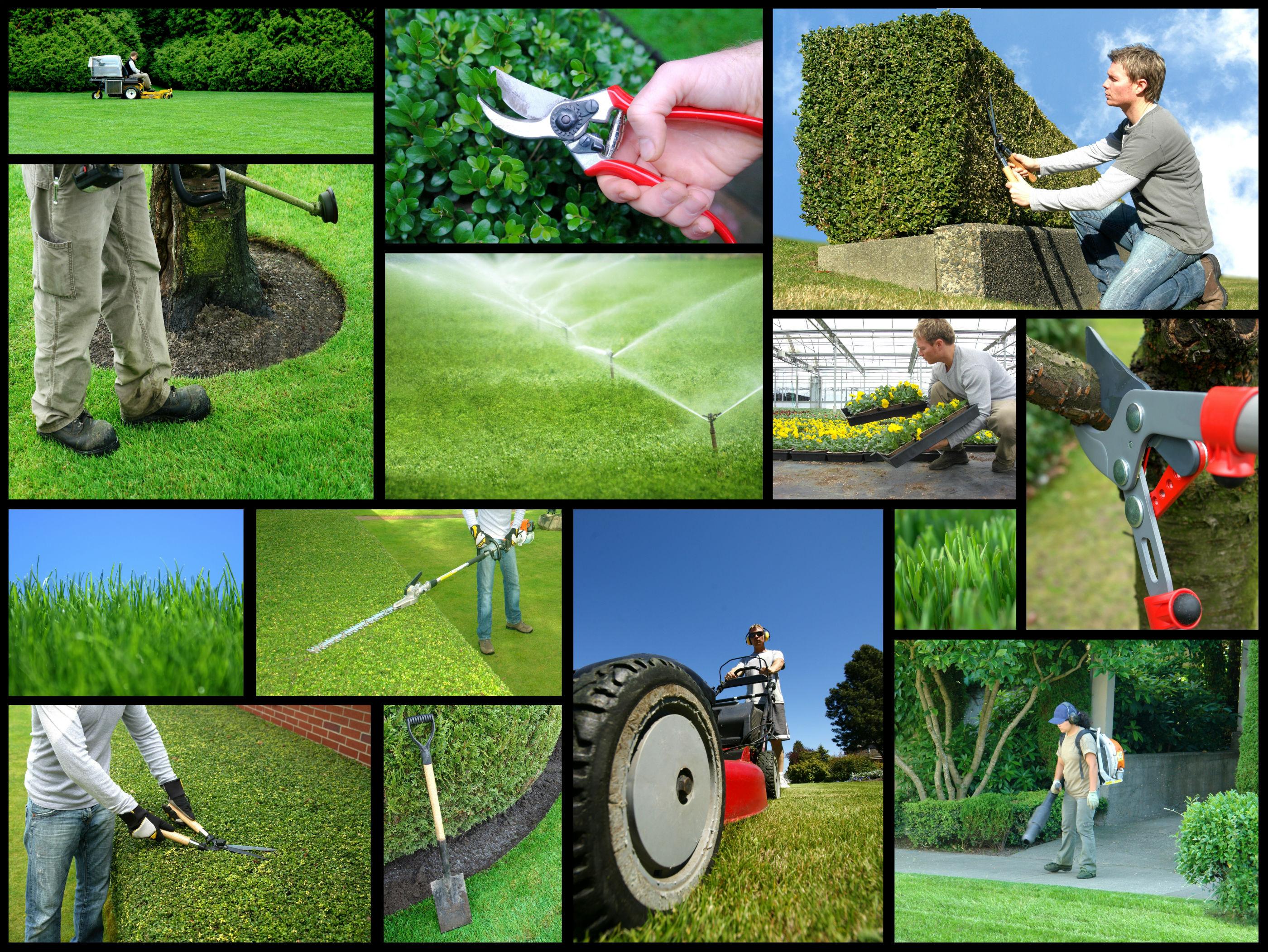 Newark Landscaping Men