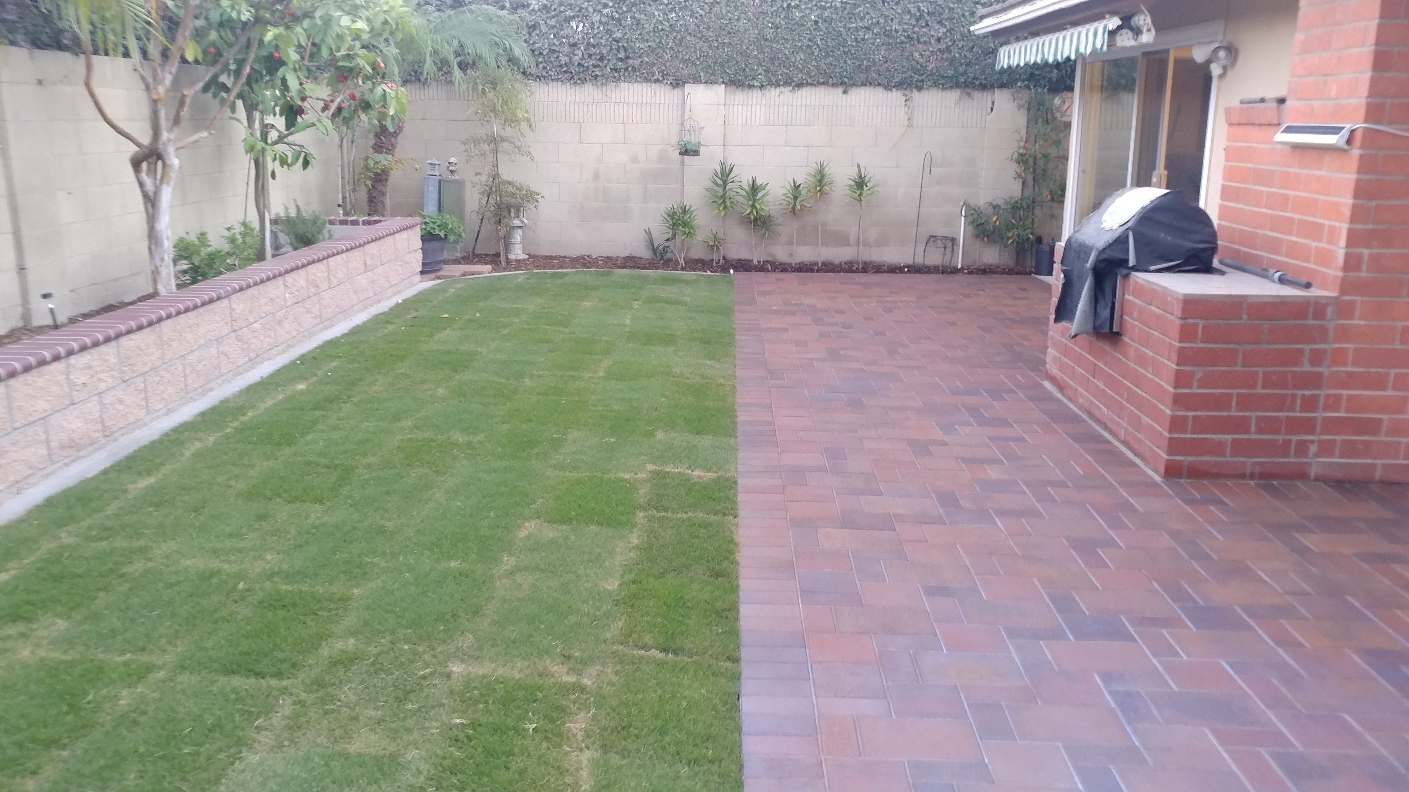 Paver, Seating wall, Irrigation & Sod