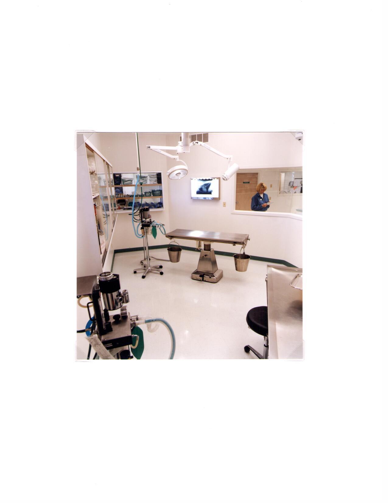 VCA Findlay Animal Hospital image 4