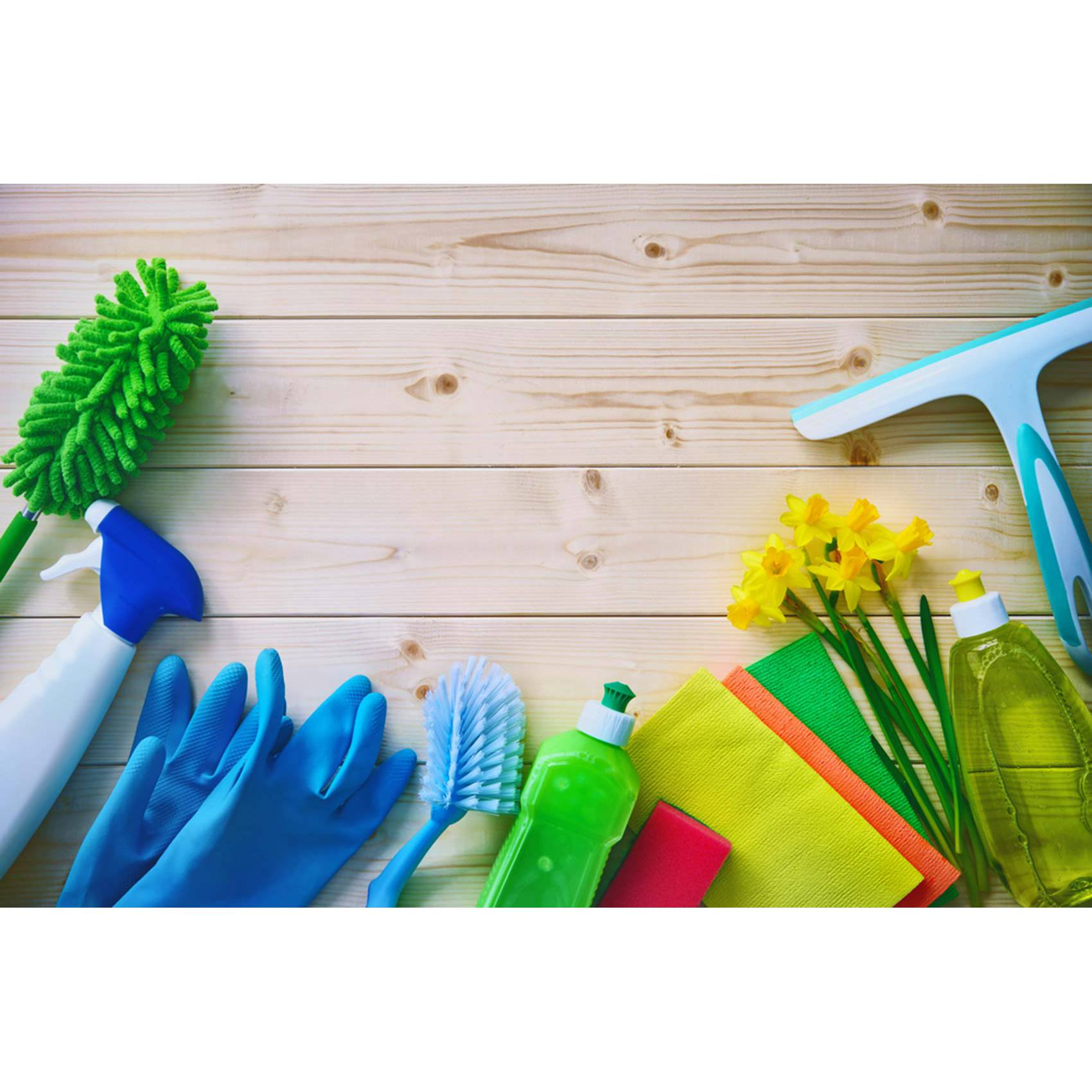 Katy House Cleaning Services