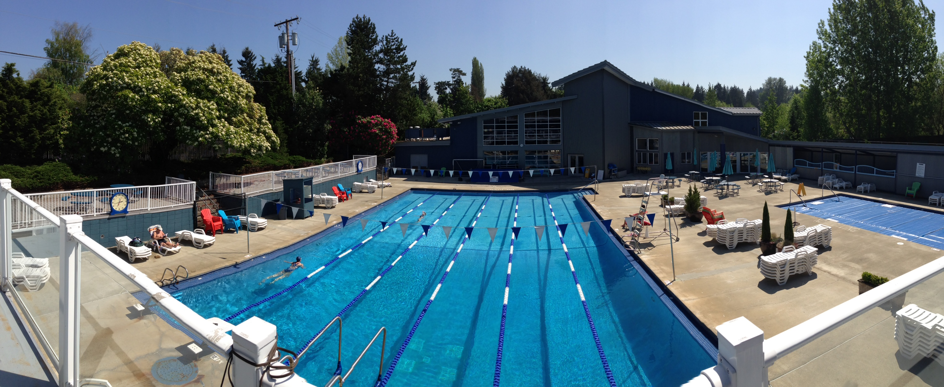 Samena Swim Amp Recreation Club Coupons Near Me In Bellevue