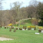 Sewickley Cemetery image 2