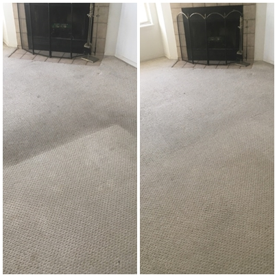 Pristine Carpet Cleaning image 15