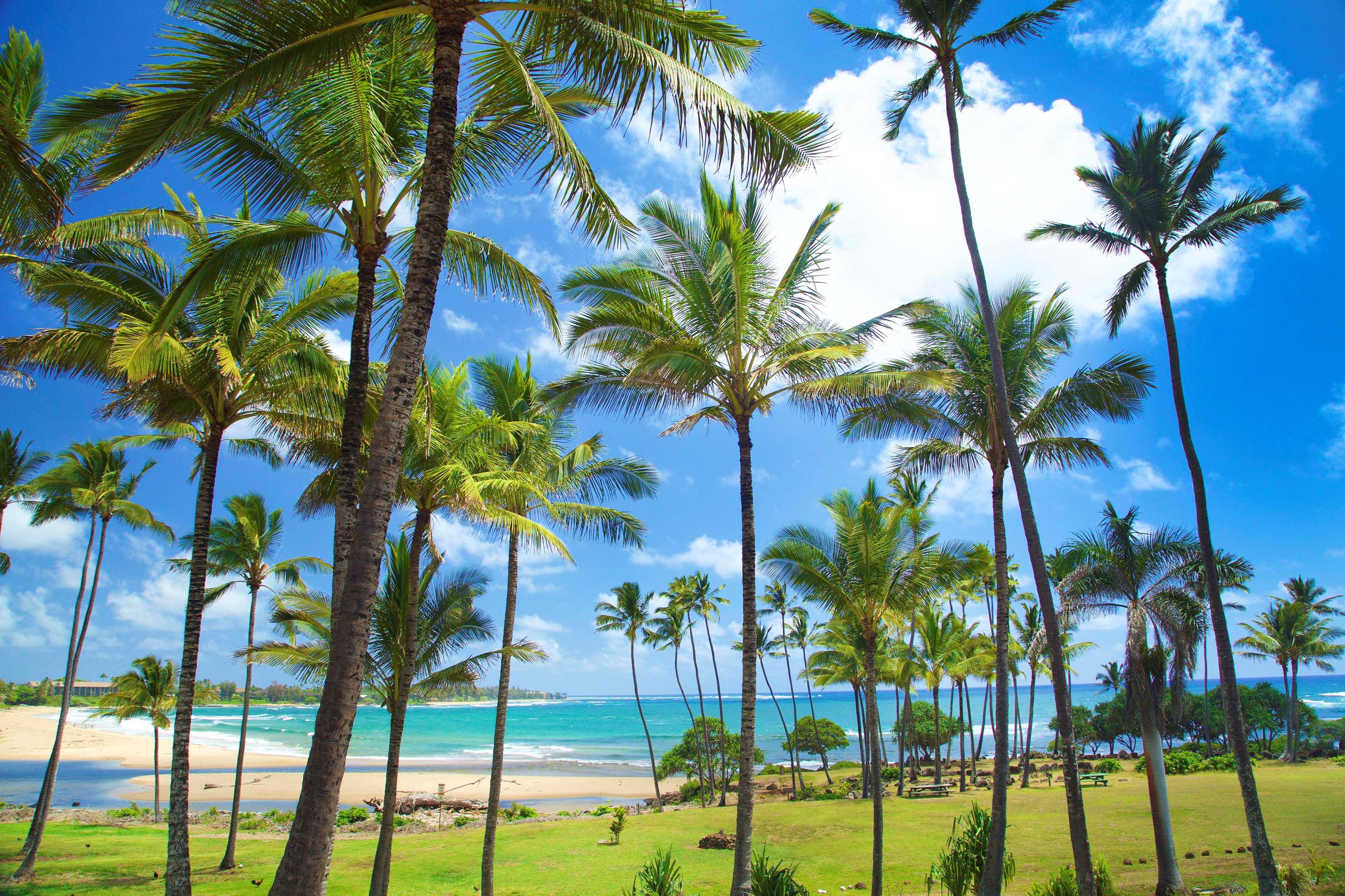 Hilton Garden Inn Kauai Wailua Bay Kapaa HI | Bed And Breakfasts