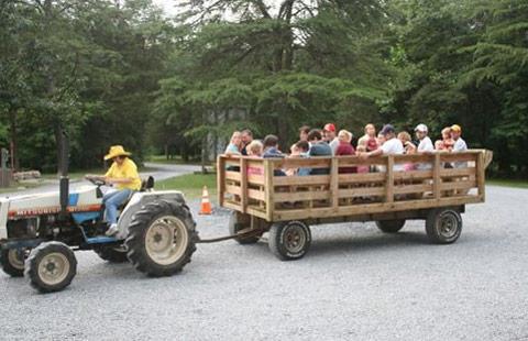Harrisonburg / Shenandoah Valley KOA Holiday image 11