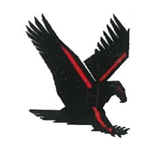 American Eagle Electric image 0