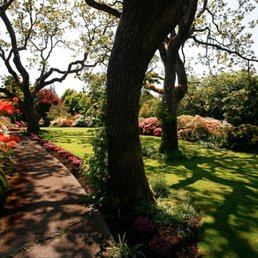 Landscaping Services in Columbus, OH
