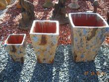 Eco-Green Garden Center image 22