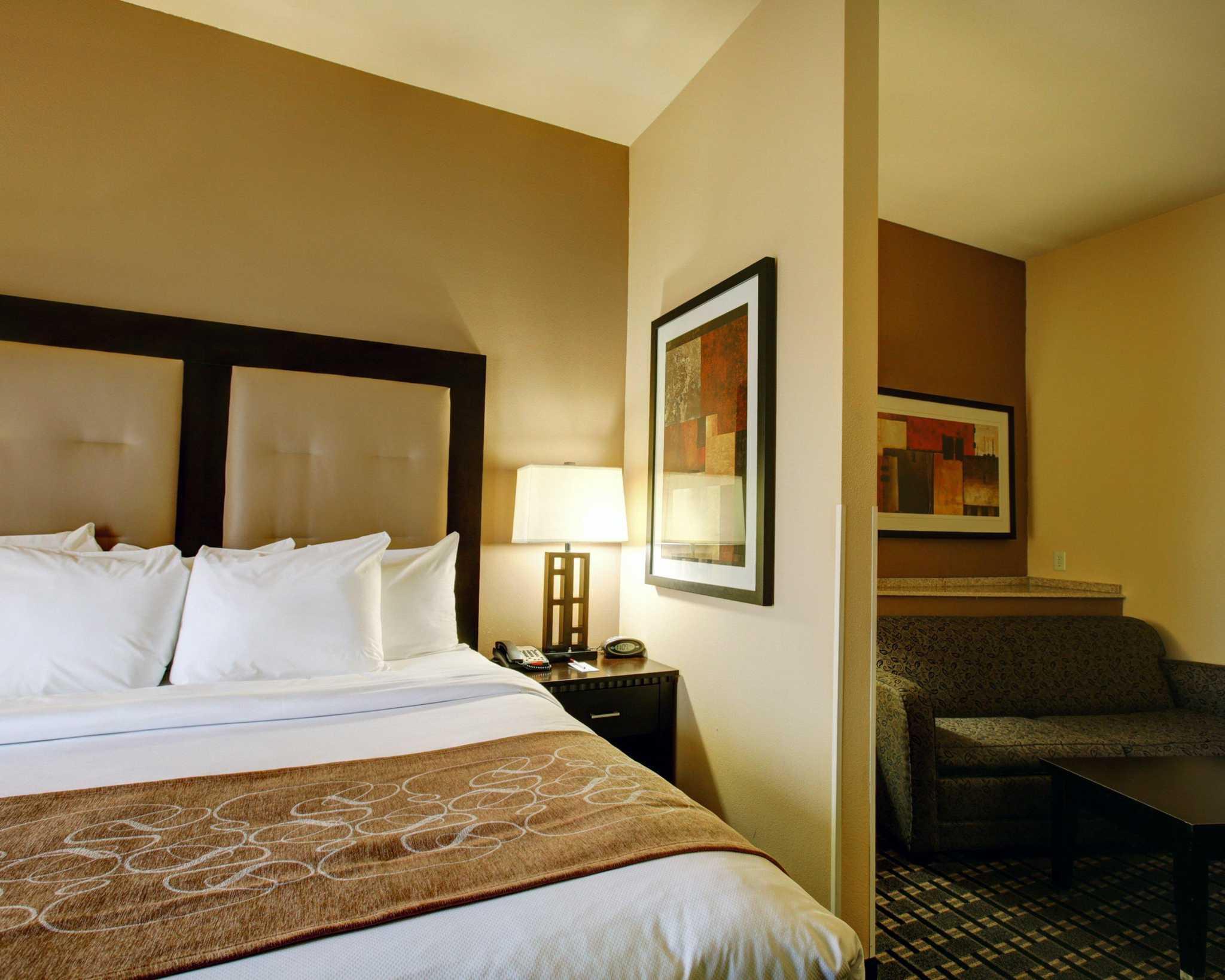 Comfort Suites Buda - Austin South image 11