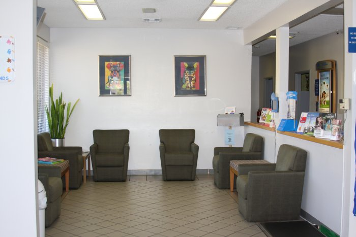 VCA Mission Viejo Animal Hospital- Closed Location image 5