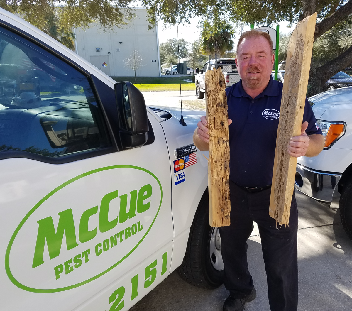 Home Services by McCue image 7